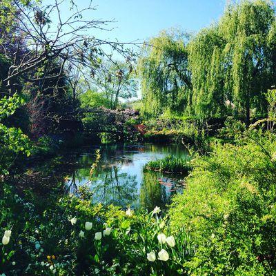 La balade romantique à Giverny, 2
