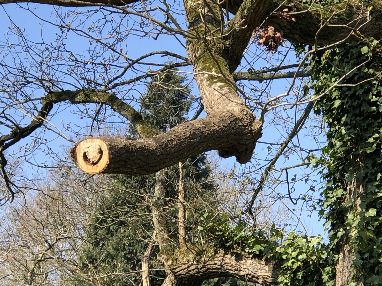 La branche rit hihihi!!! ou Labrancherie poteau où l'on attache la pancarte des droits de péage.