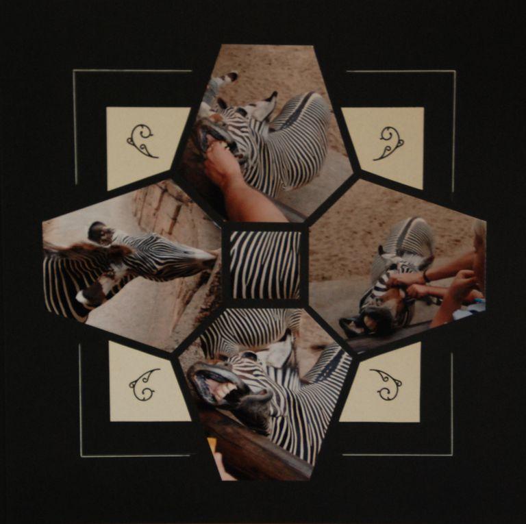 Album - Zoo-de-la-Palmyre
