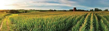 Viticulture en Iowa