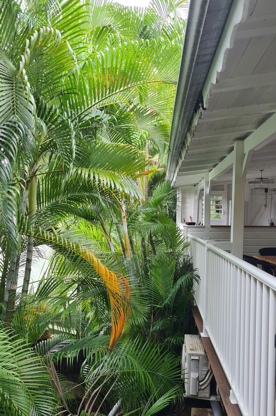 Coco Lodge à Deshaies