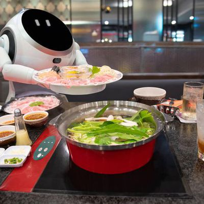 North America Cooking Robot Market 2021: Share, Trends, Scope, Opportunity and Forecast 2026