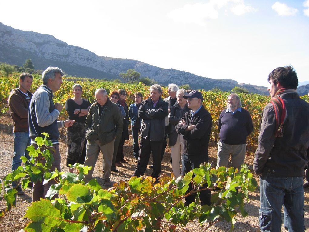 De vignes en cave du côté de Tautavel.
