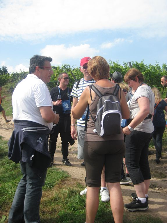 L'amicale à organisé le 7 septembre 2014 le sentier gourmand de SCHERWILLER   Promenade pédestre de 6 km, ponctuée de 7 points repas et dégustations