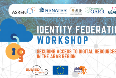 Securing Access to Digital Resources in the Arab Region