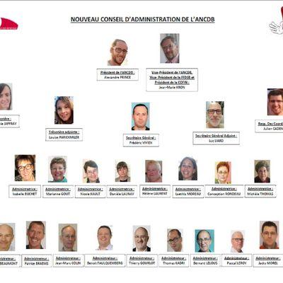 Nouvelle équipe au bureau et au CA de l'ANCDB, ma 1ère association!