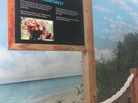 Visite de l'Oceanario de Lisbonne