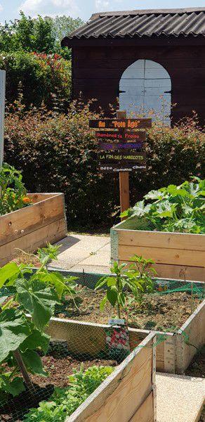 Mon jardin de fille :  les panneaux du jardin - La pose - 2
