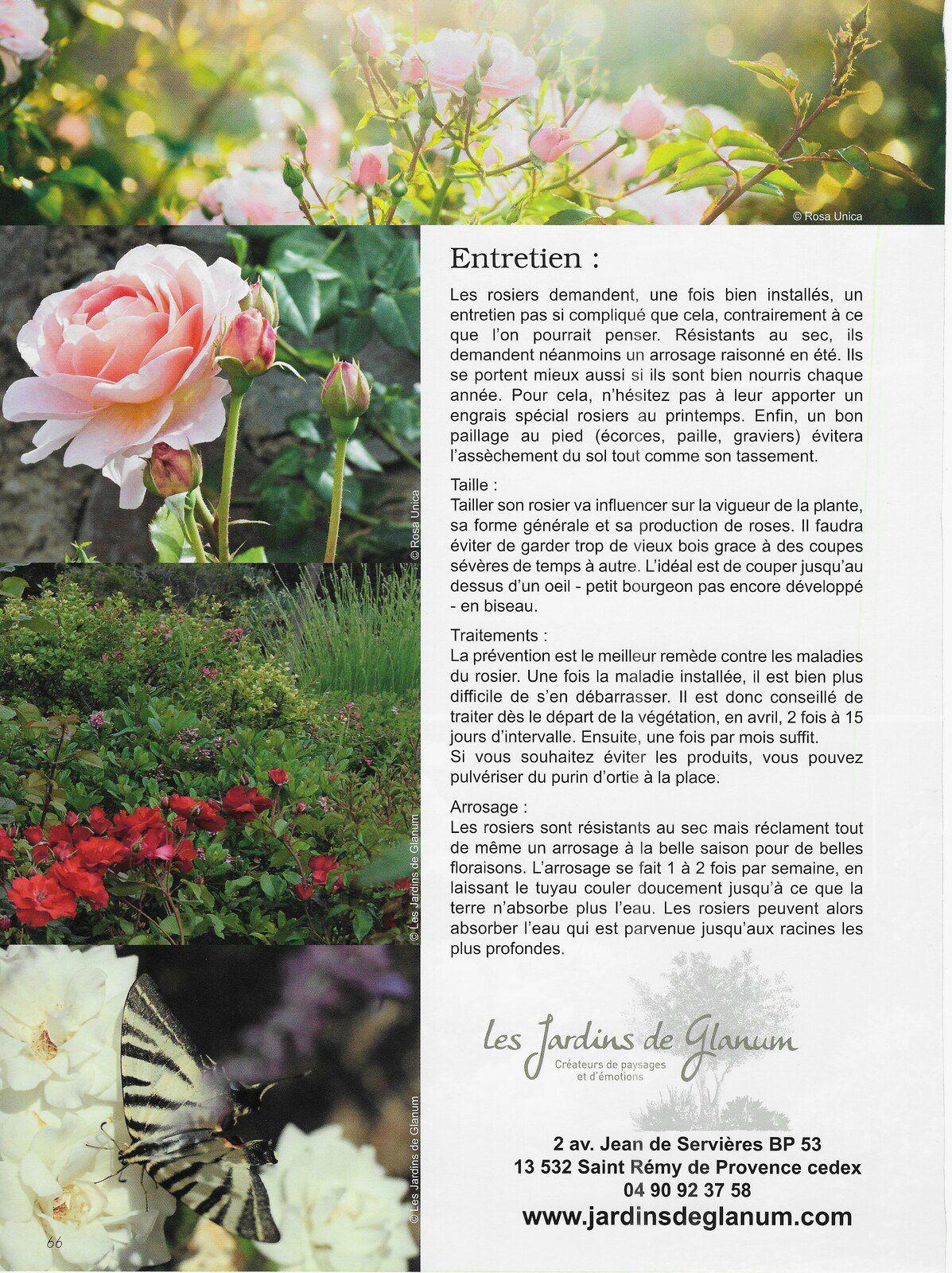 "Article "" Jardins de Roses"""