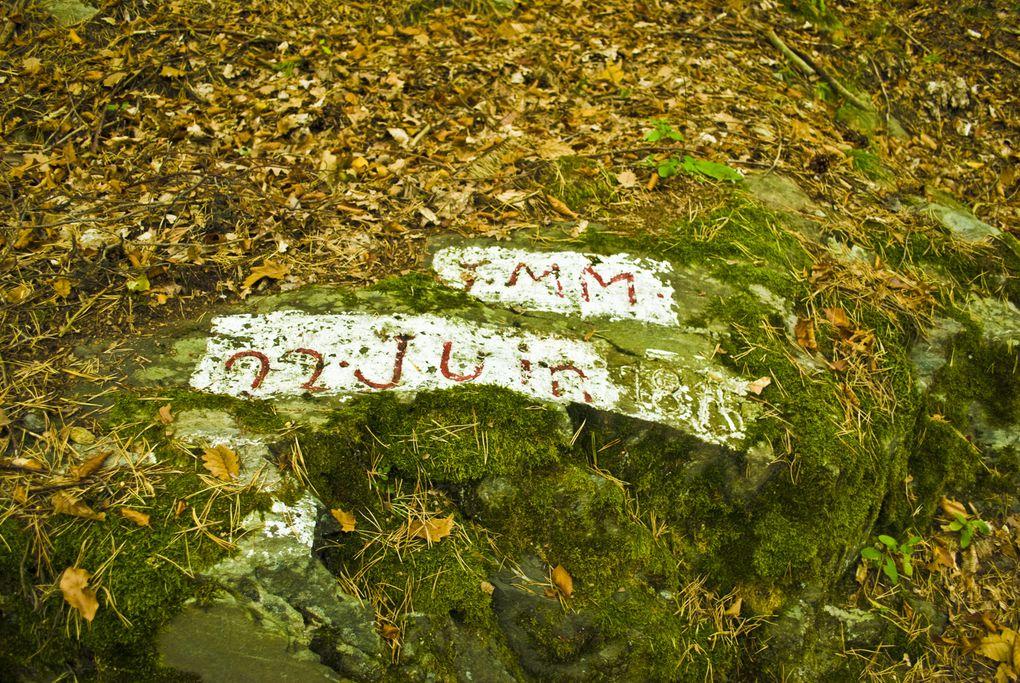 5 Ballades et randonnées à faire à Feissons