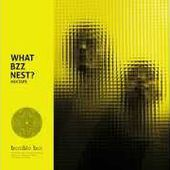 BUMBLE BZZ // WHAT BZZ NEST? (Mixtape)
