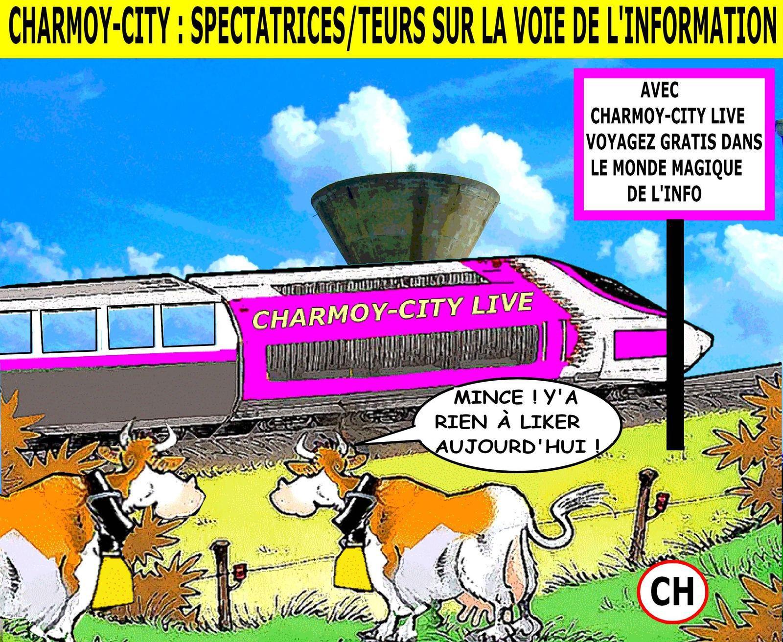 Charmoy-City, spectatrices (teurs), sur la voie de l'information .jpg
