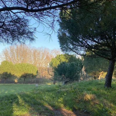 Nature en Ville - Transition Écologique   Appel à projets de L'EPT Est-Ensemble