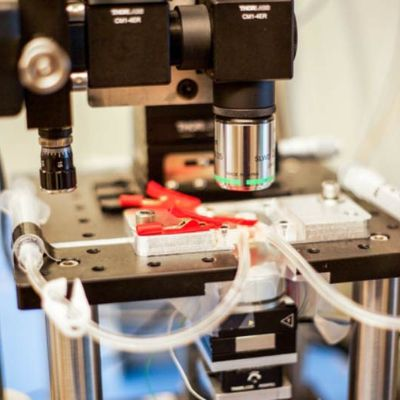 Un microscope capable de filmer presque en temps réel à l'échelle nanométrique