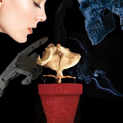 Parfum d'Amorphophallus titanum