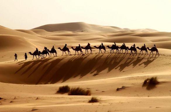 Quand t'es dans le désert...