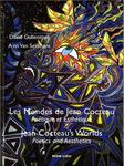 Conférence au Musée Jean Cocteau Collection Séverin Wunderman