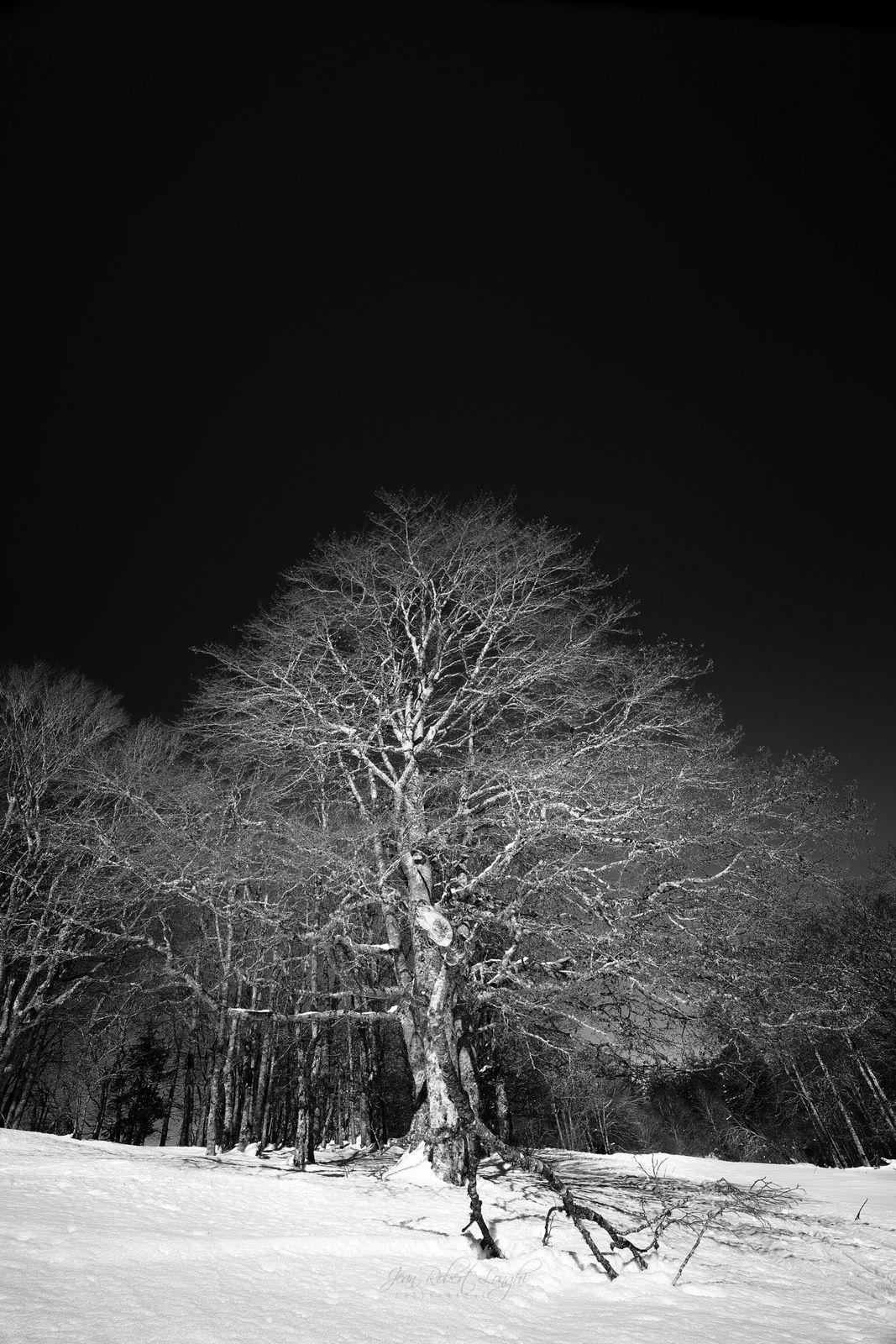 Le Larmont - Hiver - 46 - ©2021 Jean-Robert Longhi Photographie non libre de droits.
