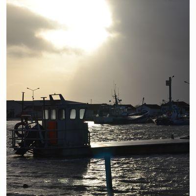 Grande Marée - Février 2014
