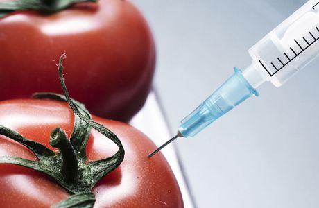 Des OGM pour vendre des pesticides