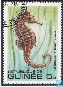 Timbre Hippocampe Guinée 1980