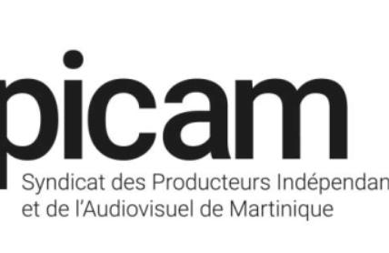 [communiqué] Le Syndicat des Producteurs Indépendants du Cinéma et de l'Audiovisuel de Martinique interpelle les candidats à la CTM !