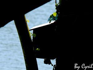 Au bord du lac...