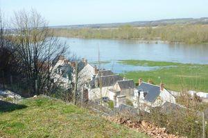 Quelques pas en Sologne et au bord de la Loire