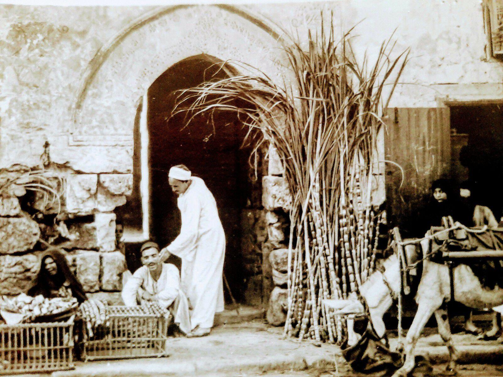 Lehnert & Landrock - Scène de vie égyptienne dans les années 1910 - Le Caire
