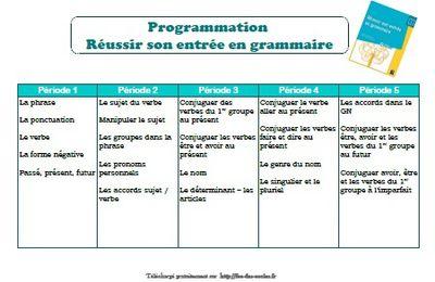 Réussir son entrée en grammaire CE1 - programmes 2018 (édition 2019) : programmation , comparatifs...