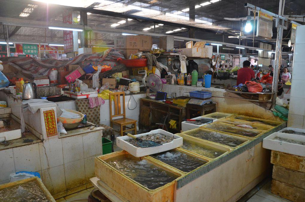 Diaporama marché : étalage poissonnerie