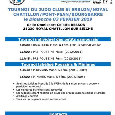 Compétition Petits Samouraïs Noyal-Châtillon sur Seiche 2019