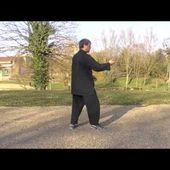 13 postures - Yangjia Michuan Taiji Quan