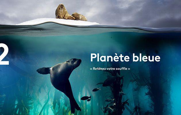 Inédit : Planète bleue, un voyage au cœur des océans dès ce soir à 21h sur France 2
