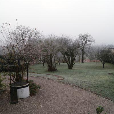Les premières grandes gelées de Lorraine -6°C