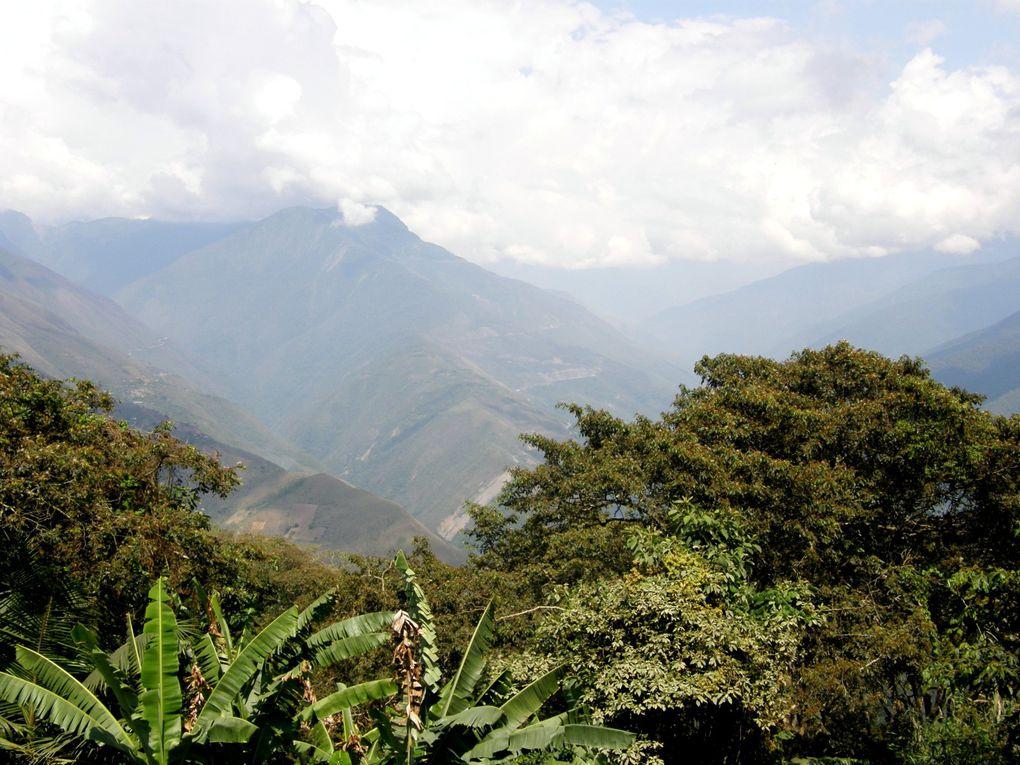 Album - Bolivie-Coroico et Rurrenabaque