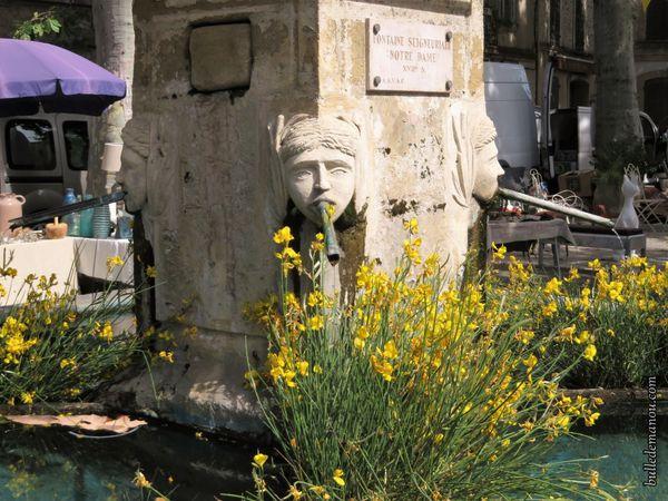 Détails de la fontaine seigneuriale