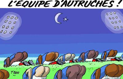 L'ÉQUIPE D'AUTRUCHES !