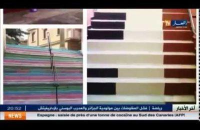 """La """"révolution"""" des escaliers colorés en Algérie"""