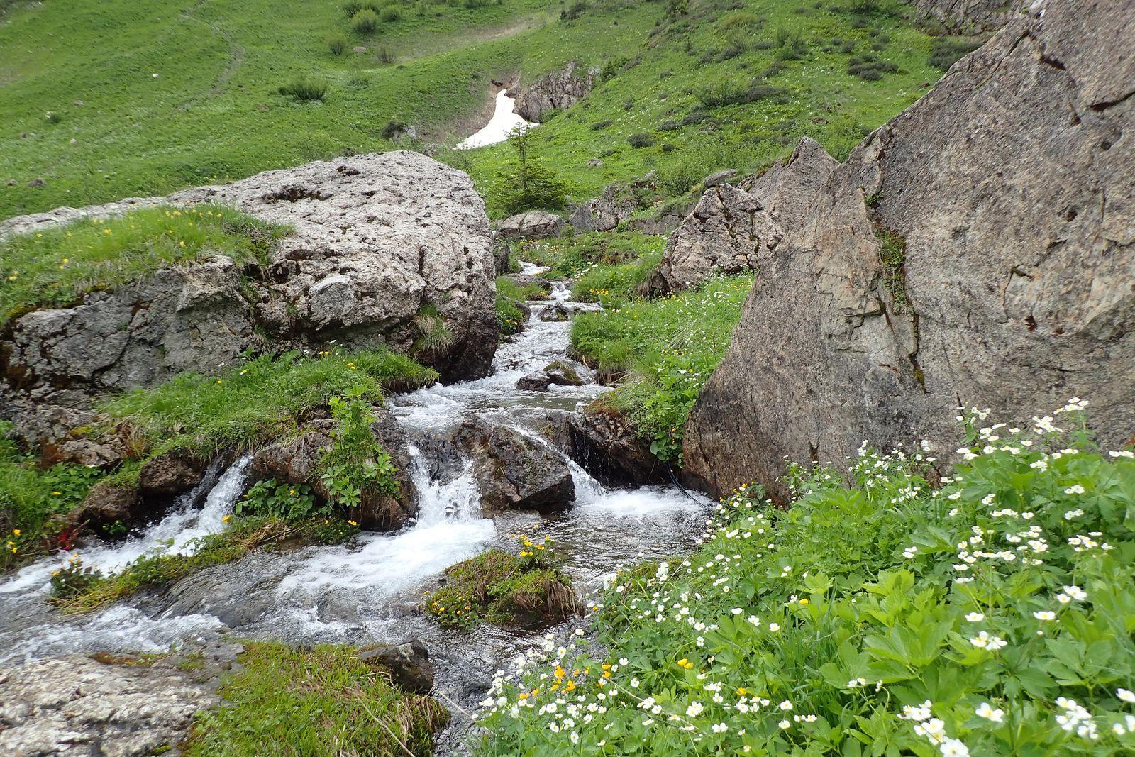 Roc de Tavaneuse > Pic de la Corne : Depuis Prétairié en boucle