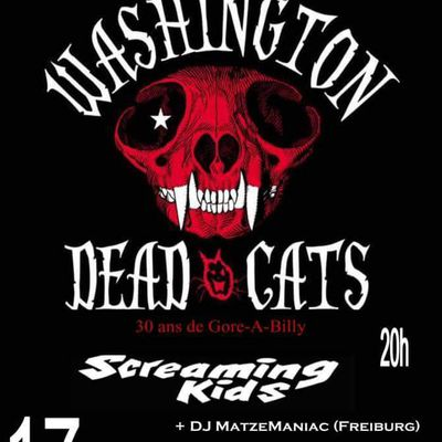 Washington Dead Cats +Screaming Kids au Checkpoint à Strasbourg
