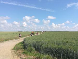 Le Trail du Pays de L'Ourcq : Trail d'Houssoy 2018