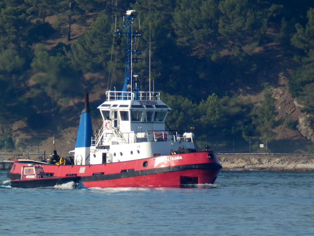 ALTAGNA , remorqueur arrivant en petite rade de Toulon et se dirigeant vers la Seyne sur Mer le 10 juillet 2020