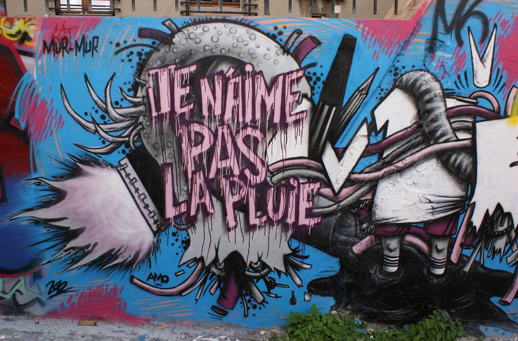 Album - Graffitis-PARIS-divers-Tom-014