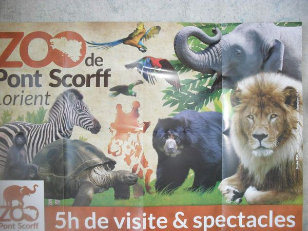 Mardi 24 juin dernier, les classes PS1/PS2 de Françoise et Catherine sont allées rendre visite aux animaux.