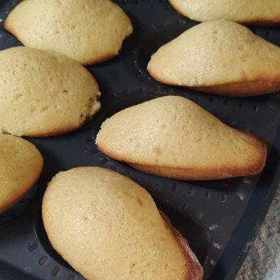 Mes madeleines vanille / miel sans gluten au cake factory.