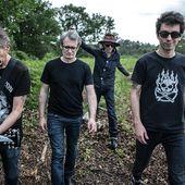 Les Wampas, la vie en rock