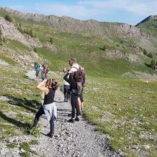 Groupe LPO Val d'Allos Haut Verdon : Sortie Observation de la Faune sauvage