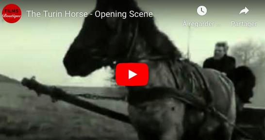 Le cheval de Turin : Béla Taar ou le refus... envers et contre tous