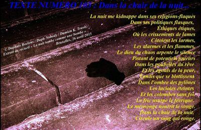 TEXTE NUMERO 105: Dans la chair de la nuit...